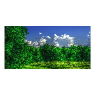 2340 Field Comelara Park Customised Photo Card