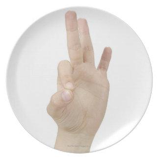 23553948 DINNER PLATES
