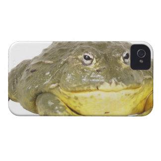 23568116 iPhone 4 CASE