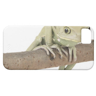 23568119 iPhone 5 COVERS