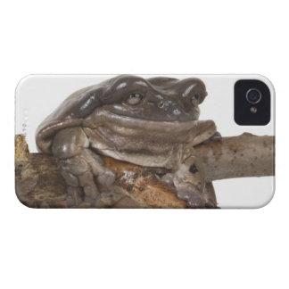 23568138 Case-Mate iPhone 4 CASES