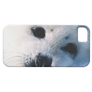 23872544 BARELY THERE iPhone 5 CASE