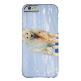 23872553 BARELY THERE iPhone 6 CASE