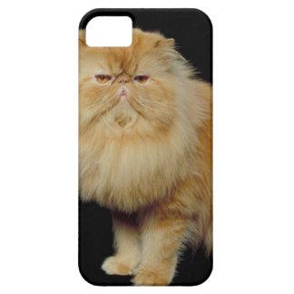23892973 iPhone 5 CASES
