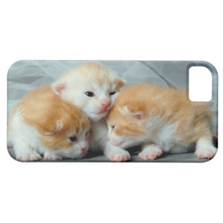 23892977 BARELY THERE iPhone 5 CASE