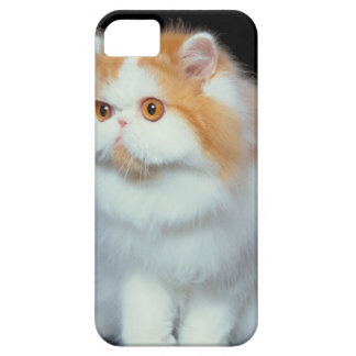 23893002 iPhone 5 COVERS