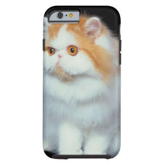 23893002 TOUGH iPhone 6 CASE