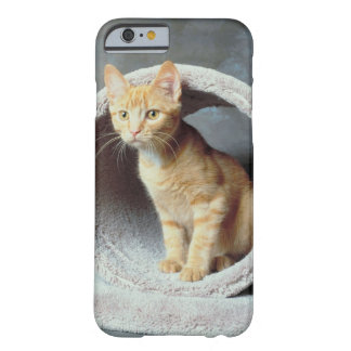 23893010 BARELY THERE iPhone 6 CASE