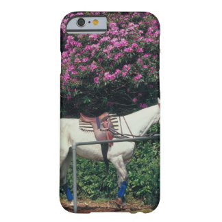 23893981 BARELY THERE iPhone 6 CASE
