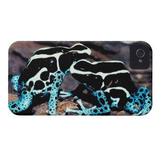 23898179 iPhone 4 CASES
