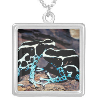 23898179 SILVER PLATED NECKLACE
