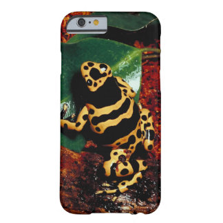 23898189 BARELY THERE iPhone 6 CASE