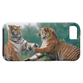 23899157 iPhone 5 COVERS