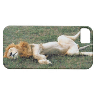 23899172 BARELY THERE iPhone 5 CASE