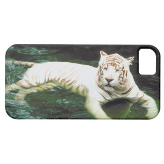 23899186 BARELY THERE iPhone 5 CASE