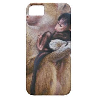 23899233 iPhone 5 CASES