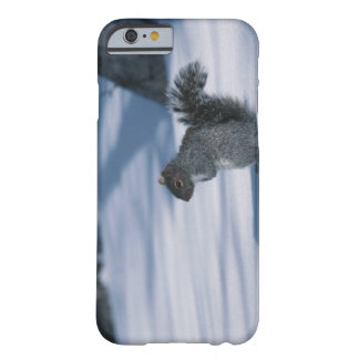 23936348 BARELY THERE iPhone 6 CASE