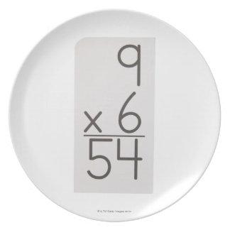 23972469 DINNER PLATES