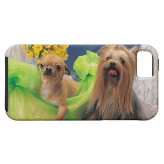 24095240 CASE FOR THE iPhone 5