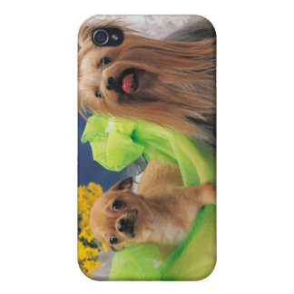 24095240 iPhone 4/4S CASE