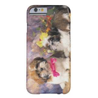 24095243 BARELY THERE iPhone 6 CASE