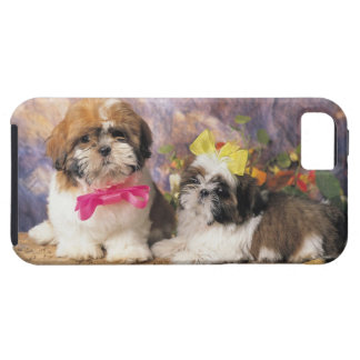 24095243 CASE FOR THE iPhone 5