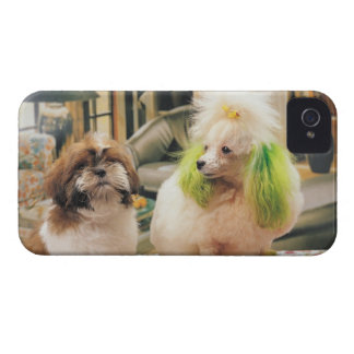 24095244 iPhone 4 COVERS
