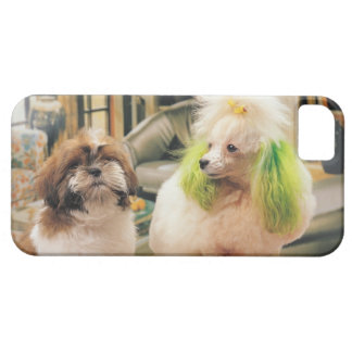 24095244 iPhone 5 CASE