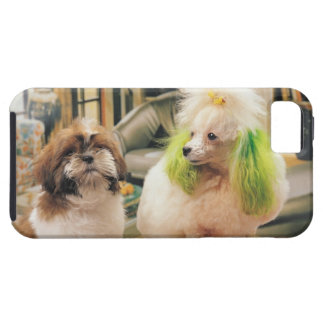 24095244 iPhone 5 COVERS