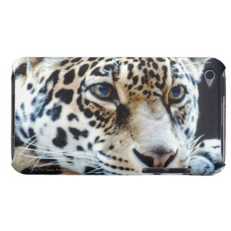 24114363 BARELY THERE iPod CASES
