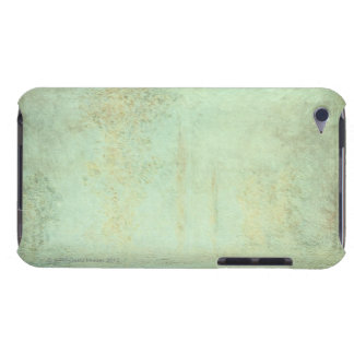 24117172 BARELY THERE iPod CASES