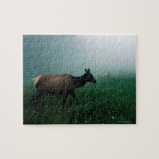 24121885 JIGSAW PUZZLE