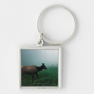 24121885 Silver-Colored SQUARE KEY RING
