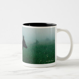24121885 Two-Tone COFFEE MUG