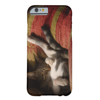 24140641 BARELY THERE iPhone 6 CASE