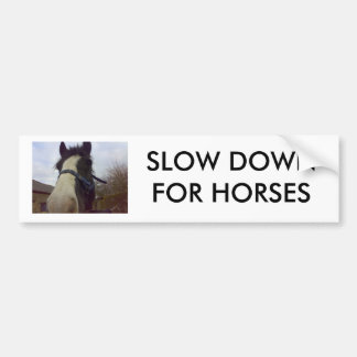 27012007032(1), SLOW DOWN FOR HORSES BUMPER STICKER