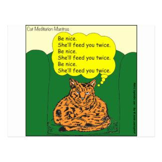 284 meditating cat cartoon postcard