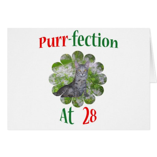 28 Purr-fection Greeting Card