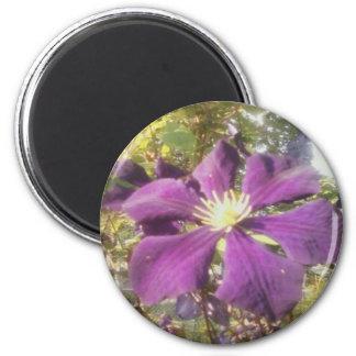 "2-1/4"" Round Magnet Passionate Purple Flower"