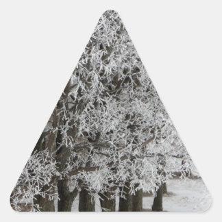 2-26-13 random winter pics 064.JPG Triangle Sticker