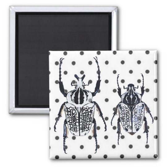 2 Black & White Beetles on Dots Square Magnet