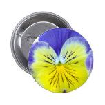2 Blue Yellow Pansies 6 Cm Round Badge