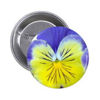 2 Blue Yellow Pansies Pin