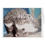 2 cute hedgehogs greeting card