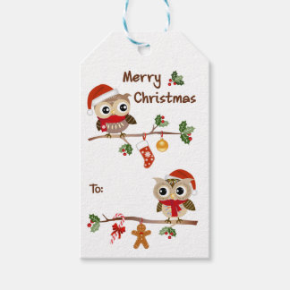 2 Cute Owls Merry Christmas Gift Tags