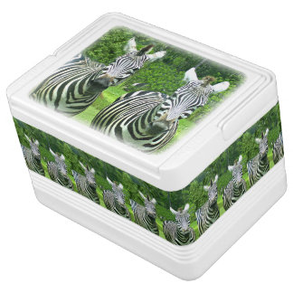 2 Cute Zebras Igloo Cool Box