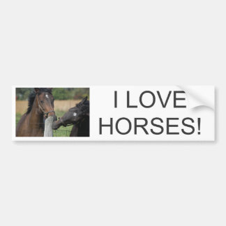 2 Horses Chewing a Fence Post Bumper Sticker