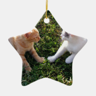 2 Kittens playing in garden Ceramic Star Decoration