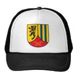 2.Panzergrenadierdivision Hat