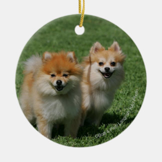 2 Pomeranians Looking at Camera Round Ceramic Decoration
